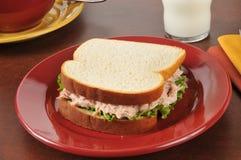 Fresh tuna sandwich Royalty Free Stock Image