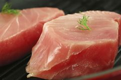 Fresh Tuna Steaks Royalty Free Stock Image