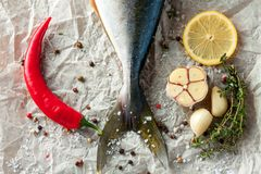 Fresh tuna tail with vegetables. Top view. Top view of fresh tuna tail with chili pepper, lemon, garlic and spices on baking paper Royalty Free Stock Photos
