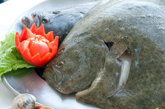 Fresh turbot. With vegetables, ready to cook Royalty Free Stock Images