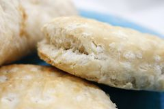 Fresh biscuit closing picture. Fresh Turkey sand Panini, closing picture in bakery store Stock Images