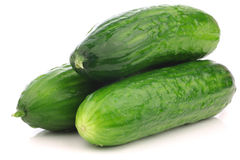 Fresh turkish cucumbers Stock Photography