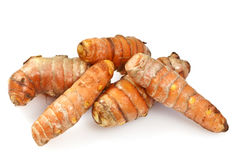 Fresh Turmeric or Curcuma Rhizome Stock Photography