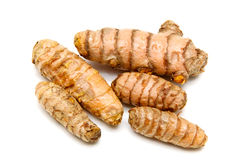 Fresh Turmeric rhizomes Royalty Free Stock Photo
