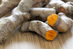 Fresh Turmeric Root Royalty Free Stock Photography