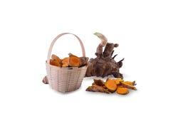 Fresh turmeric root. Stock Photo