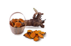 Fresh turmeric root. Stock Photography