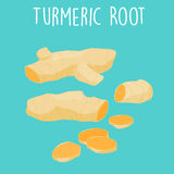 Fresh turmeric root on white background  Stock Photo