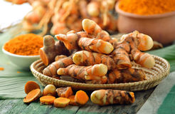 Fresh turmeric roots in the basket Stock Photography
