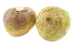 Fresh turnip (Brassica rapa rapa) and a celery root(Apium graveolens var. rapaceum). On a white background Stock Image