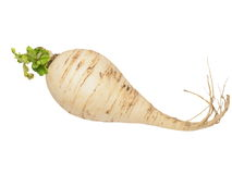 Fresh turnip with leaves isolated Stock Image