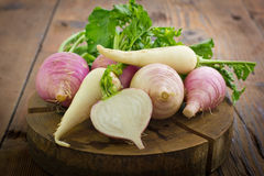 Fresh turnip and white radish. On the wooden table Stock Photography