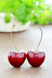 Fresh two cherries on wooden background. Stock Image