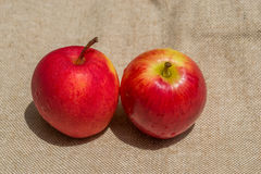 Fresh two red apples on natural sackcloth Royalty Free Stock Photo