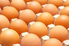 Fresh unbroken brown chicken eggs lie in a cardboard tray. Fresh unbroken brown chicken eggs lie in a special cardboard tray Royalty Free Stock Images