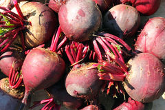 Fresh uncooked beetroot background. Royalty Free Stock Photography