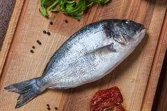 Fresh uncooked dorado fish with ingredients closeup Royalty Free Stock Photo