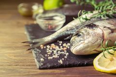 Fresh uncooked dorado. Or sea bream fish with lemon slices, spices and herbs. Mediterranean cuisine. Top view Royalty Free Stock Images