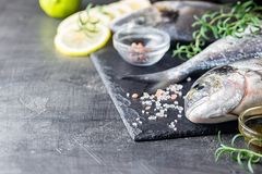 Fresh uncooked dorado. Or sea bream fish with lemon slices, spices and herbs. Mediterranean cuisine. Top view Stock Photography