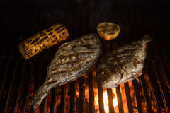 Fresh uncooked dorado. Grilled dorado with vegetables preparing Stock Photo