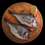 Fresh uncooked dorado. With lemon, herbs, oil and spices ready for preparing Stock Photo