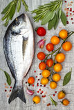 Fresh uncooked dorado or sea bream fish with lemon, aromatic herbs, vegetables and spices over grey stone background. Top view.  Royalty Free Stock Photos