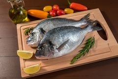 Fresh uncooked dorado or sea bream fish with lemon. Herbs, oil, vegetables and spices on wooden board over dark backdrop, top view Royalty Free Stock Images