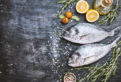 Fresh uncooked dorado. Or sea bream fish with lemon, herbs, olive oil and spices over black backdrop, top view with copy space Royalty Free Stock Image