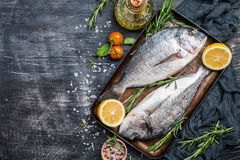 Fresh uncooked dorado. Or sea bream fish with lemon, herbs, olive oil and spices over black backdrop, top view with copy space Stock Photos