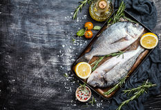 Fresh uncooked dorado. Or sea bream fish with lemon, herbs, olive oil and spices over black backdrop, top view with copy space Stock Images