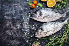 Fresh uncooked dorado. Or sea bream fish with lemon, herbs, olive oil and spices over black backdrop, top view with copy space Royalty Free Stock Photo