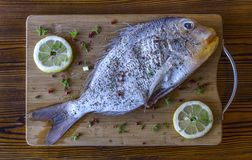 Fresh raw dorado or sea bream fish with lemon, herbs, pepper, and spices on wooden board royalty free stock images