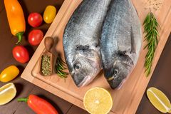 Fresh uncooked dorado or sea bream fish with lemon. Herbs, vegetables and spices on wooden board over dark backdrop, top view Royalty Free Stock Image