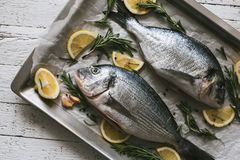 Fresh uncooked Dorado or sea bream fish with lemon and rosemary. Lie on a metal baking tray on the white wooden  background Stock Photo