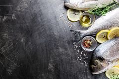 Fresh uncooked dorado. Or sea bream fish with lemon slices, spices and herbs. Mediterranean cuisine. Top view Royalty Free Stock Photography