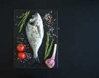 Fresh uncooked dorado or sea bream fish with. Vegetables, herbs and spices on black slate tray over dark grunge backdrop, top view, copy space Royalty Free Stock Photos