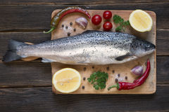 Fresh uncooked fish on black background with tomatoes, chili, to Royalty Free Stock Image