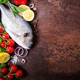 Fresh uncooked fish, dorado, sea bream with lemon, herbs, vegetables and spices on rustic background. Top view. Fresh uncooked fish, dorado, sea bream with Royalty Free Stock Image