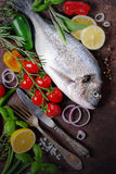 Fresh uncooked fish, dorado, sea bream with lemon, herbs, vegetables and spices on rustic background. Top view. Fresh uncooked fish, dorado, sea bream with Royalty Free Stock Photography
