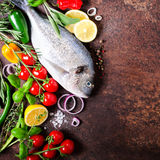 Fresh uncooked fish, dorado, sea bream with lemon, herbs, vegetables and spices on rustic background. Top view. Free space for you. Fresh uncooked fish, dorado Stock Images