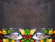 Fresh uncooked fish, dorado, sea bream with lemon, herbs, vegetables and spices on stone background. Top view. Banner.  Royalty Free Stock Image