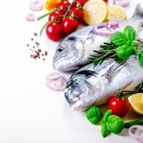 Fresh uncooked fish, dorado, sea bream with lemon, herbs, vegetables and spices on white background. Top view. Square. Crop Stock Photos