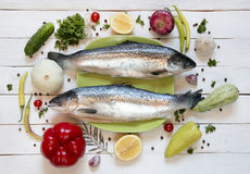 Fresh uncooked fish on green plate with lemon, top view. Fresh uncooked fish on green plate with lemon, herbs, vegetables and spices on rustic wooden background Stock Photography