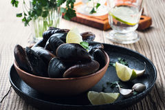 Fresh uncooked mussels in the shell. In ceramic bowl Stock Photography