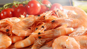 Fresh uncooked pink prawns Royalty Free Stock Image