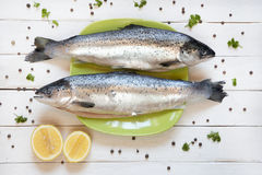 Fresh uncooked salmon on green plate with lemon royalty free stock images