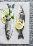 Fresh uncooked sea bass on a gray background. Top view Royalty Free Stock Photography