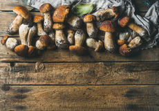 Fresh uncooked white forest mushrooms on wooden background Royalty Free Stock Image
