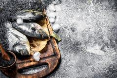 Fresh unprepared dorado fish on a cutting board. On a rustic background Royalty Free Stock Images