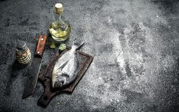 Fresh unprepared Dorado fish with white wine. On a rustic background Royalty Free Stock Image